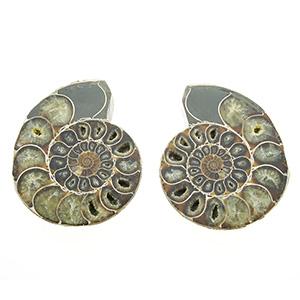 Set ammonieten - Circles Arty&Jewelry - Zwijndrecht