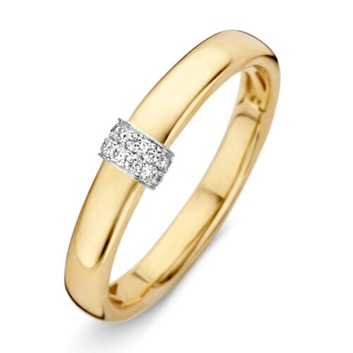 Ring bicolor briljant 0.07 crt.