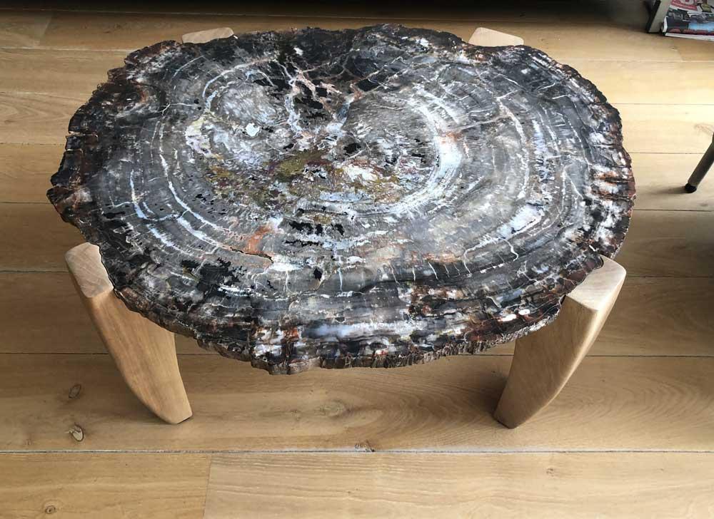 Tafel versteend hout uit het Petrified Forrest Arizona - Circles Art&Jewelry - Zwijndrecht